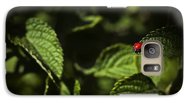 Galaxy Case featuring the photograph Ladybug by Bradley R Youngberg
