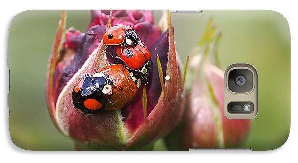 Ladybug Foursome Galaxy S7 Case