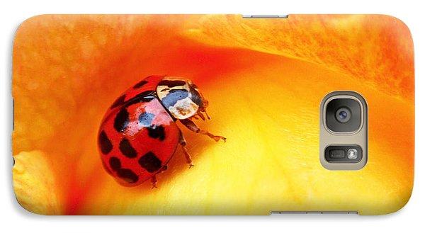 Ladybug Galaxy S7 Case by Rona Black