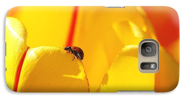 Galaxy Case featuring the photograph Ladybug - The Journey by Susan  Dimitrakopoulos