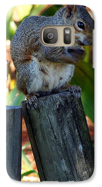 Galaxy Case featuring the photograph Lake Howard Squirrel 019 by Chris Mercer