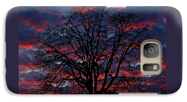 Galaxy Case featuring the photograph Lake Oswego Sunset by Nick  Boren