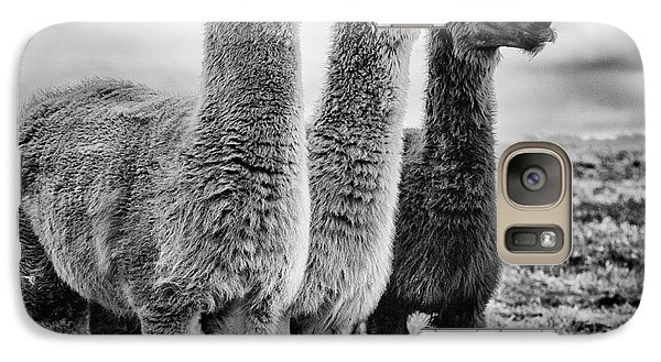 Lama Lineup Galaxy S7 Case by John Farnan