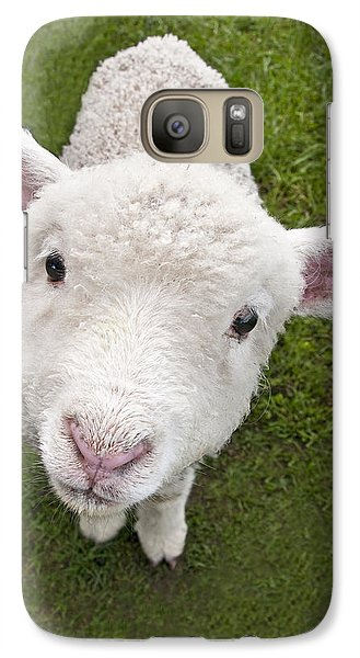 Galaxy Case featuring the photograph Lamb by Dennis Cox WorldViews