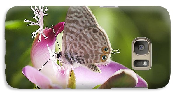 Galaxy Case featuring the photograph Lang's Short-tailed Blue II by Meir Ezrachi