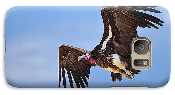 Lappetfaced Vulture Galaxy S7 Case by Johan Swanepoel