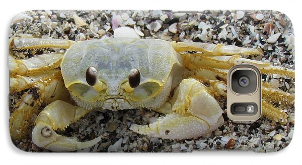 Galaxy Case featuring the photograph Ghost Crab by Cynthia Guinn