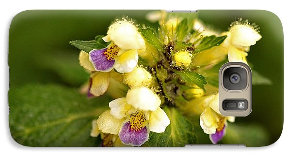 Galaxy Case featuring the photograph Large Flowered Hemp-nettle by Liz  Alderdice
