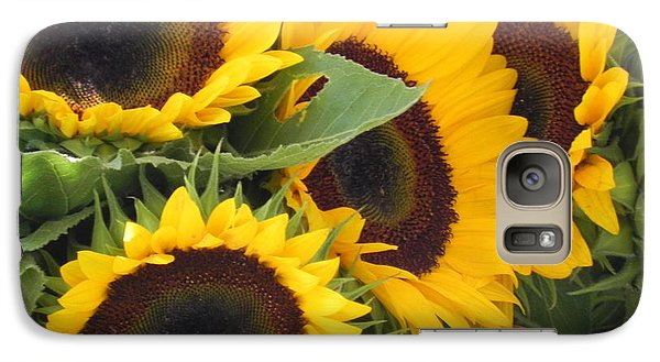 Galaxy Case featuring the photograph Large Sunflowers by Chrisann Ellis