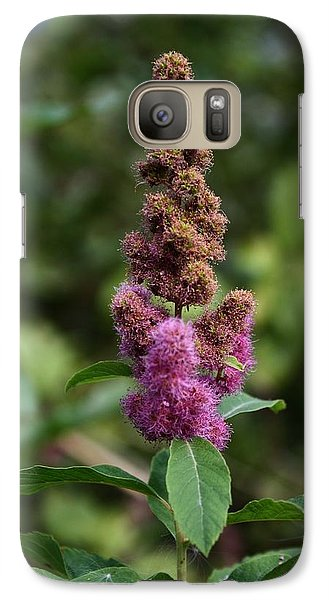 Galaxy Case featuring the photograph Last Alpine Flower by Amanda Holmes Tzafrir