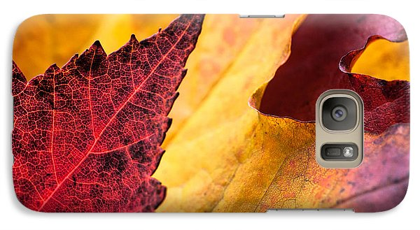 Galaxy Case featuring the photograph Last Days Of Fall by Crystal Hoeveler