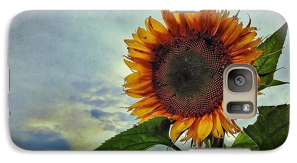Galaxy Case featuring the photograph Late August Sun by Jame Hayes