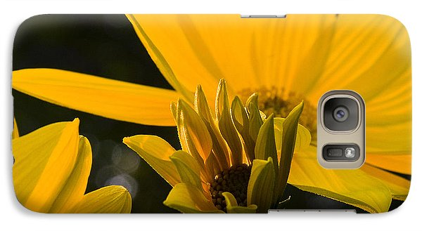 Galaxy Case featuring the photograph Late Summer Blooms by Michael Friedman