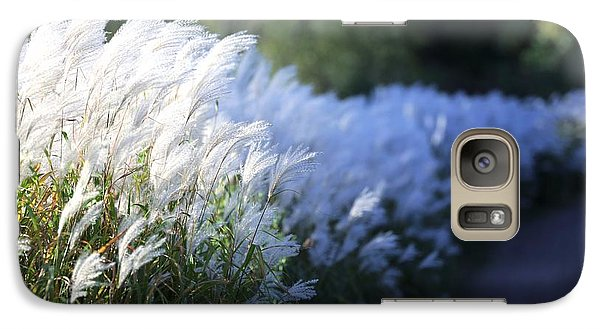 Galaxy Case featuring the photograph Late Summer Path by Kate Purdy