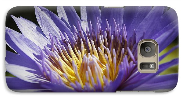 Galaxy Case featuring the photograph Lavendar Lily by Laurie Perry