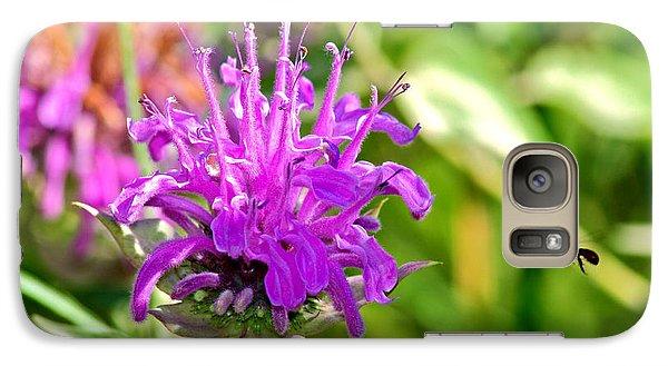 Galaxy Case featuring the photograph Lavender Pink Bee Balm Wild Bergamot by Karon Melillo DeVega
