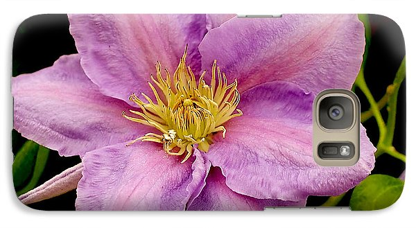 Lavender Pink Clematis Galaxy Case by Rona Black