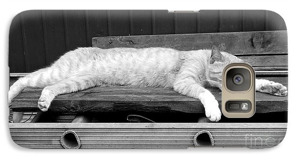 Galaxy Case featuring the photograph Lazy Cat by Andrea Anderegg