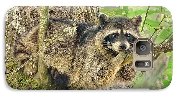 Lazy Day Raccoon Galaxy Case by Jennie Marie Schell