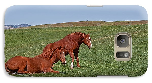 Galaxy Case featuring the photograph Lazy Horses by Valerie Garner