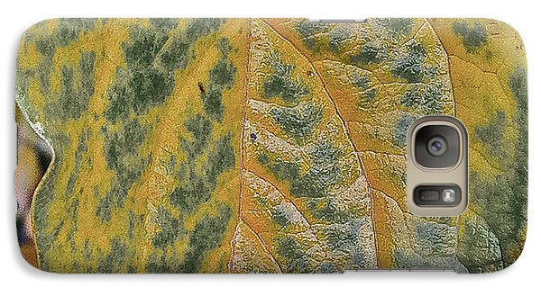 Galaxy Case featuring the photograph Leaf After Rain by Bill Owen