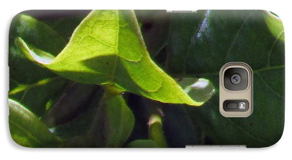 Galaxy Case featuring the photograph Leaf by Debi Singer