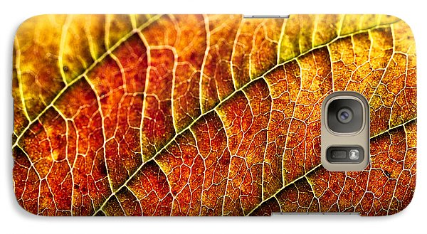 Galaxy Case featuring the photograph Leaf Rainbow by Crystal Hoeveler