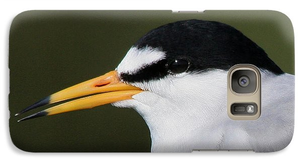 Galaxy Case featuring the photograph Least Tern Portrait by Bob and Jan Shriner