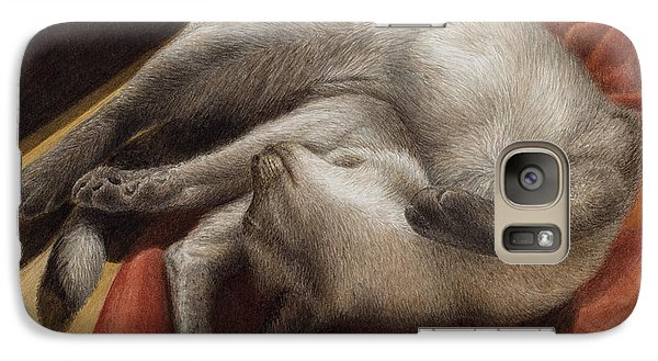 Galaxy Case featuring the painting Let Sleeping Kitties Lie by Pat Erickson