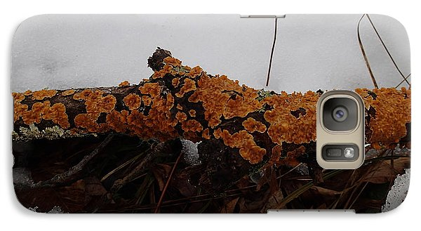 Galaxy Case featuring the photograph Lichen N'snow by Robert Nickologianis