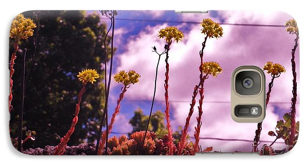 Galaxy Case featuring the photograph Lichen On A Roof by Suzanne McKay