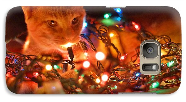 Galaxy Case featuring the photograph Lighting Up The Christmas Cat by Lynda Dawson-Youngclaus