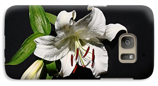 Galaxy Case featuring the photograph Lily At Daybreak by Nick Kloepping