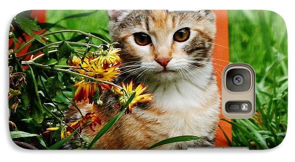 Galaxy Case featuring the photograph Lily Garden Cat by VLee Watson