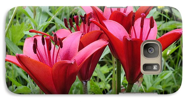 Galaxy Case featuring the photograph Lily Red by Gene Cyr