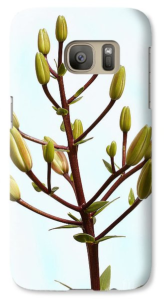 Galaxy Case featuring the photograph Lily Tree by Steve Augustin