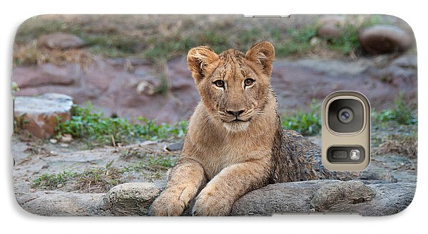Galaxy Case featuring the photograph Lion Cub by John Black
