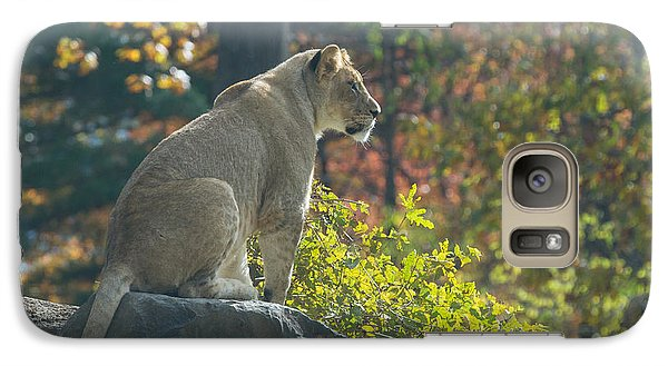 Lion In Autumn Galaxy S7 Case