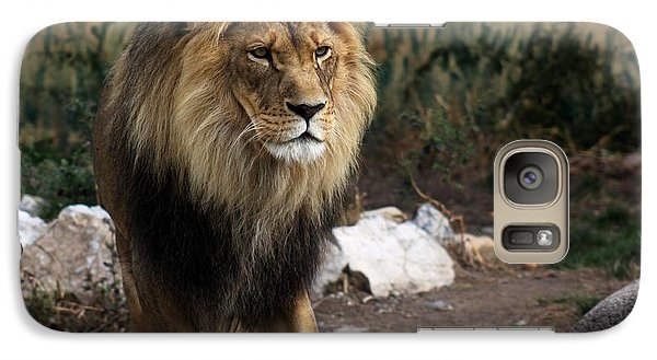 Galaxy Case featuring the photograph Lion King by Ramabhadran Thirupattur