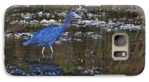 Galaxy Case featuring the photograph Little Blue Heron by Gary Hall