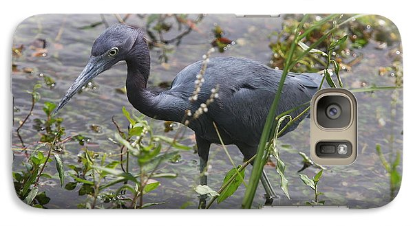 Galaxy Case featuring the photograph Little Blue Heron - Waiting For Prey by Christiane Schulze Art And Photography