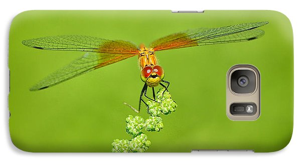 Galaxy Case featuring the photograph Little Bugger by Greg Norrell