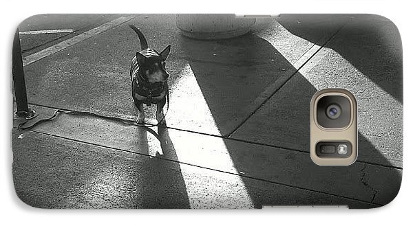 Galaxy Case featuring the photograph Little Dog Big Shadow by Lennie Green