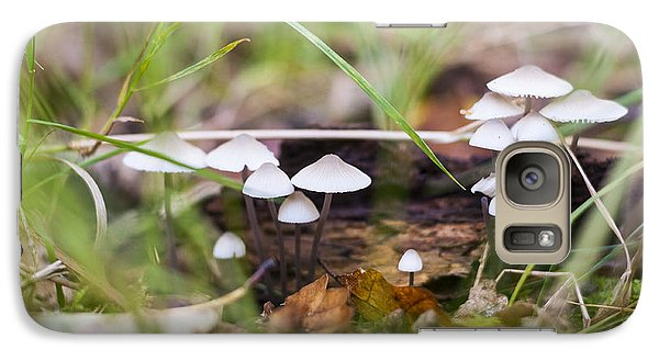 Galaxy Case featuring the photograph Little Fungi by David Isaacson