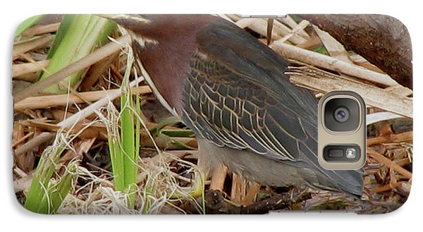 Galaxy Case featuring the photograph Little Green Heron by Donna Brown