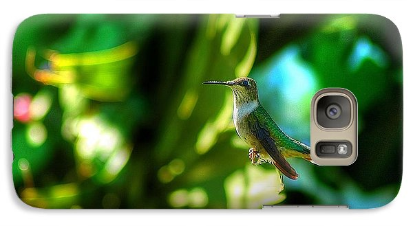 Galaxy Case featuring the photograph Little Humming Bird by Ed Roberts