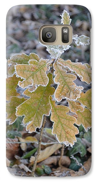 Galaxy Case featuring the photograph Little Oak by Felicia Tica