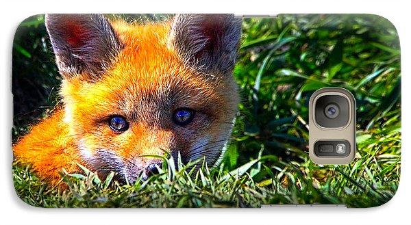 Little Red Fox Galaxy S7 Case by Bob Orsillo