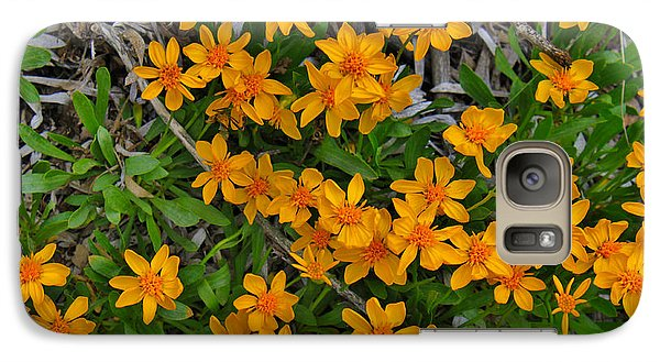 Galaxy Case featuring the photograph Little Sunflower In The Mountains by Janice Rae Pariza