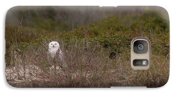 Galaxy Case featuring the photograph Little Talbot Snowbird by Paul Rebmann